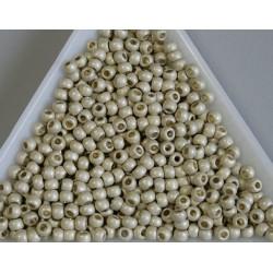 Toho R8-PF558F, Permanent Finish - Matte Galvanized Aluminum, 5g